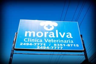 Veterinaria Moralva